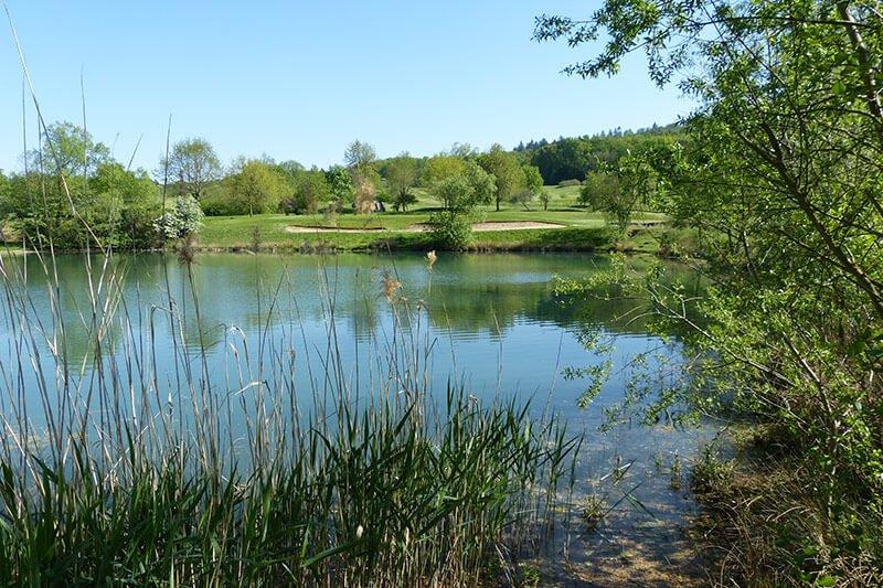 Lebensraum Golfplatz - Impressionen